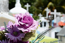 Эксгумация и перезахоронение